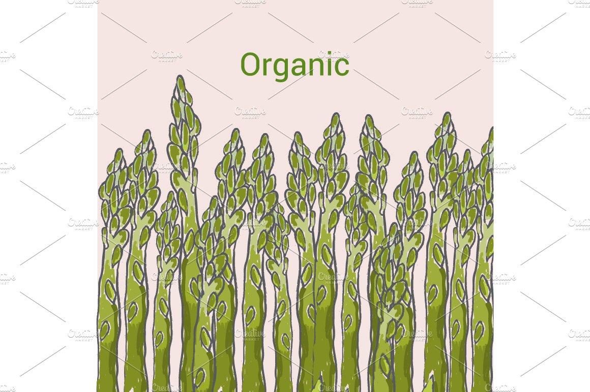 Asparagus Cartoon Vector.