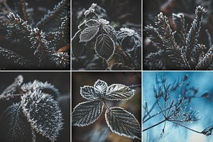 Moody Christmas Winter Photo Bundle