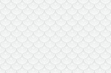 White seamless background. Scale.