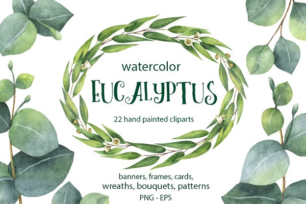 Watercolor Eucalyptus.