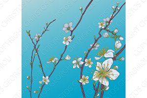 Cherry Peach Blossom Flowers Background Pattern