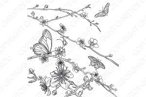 Butterflies Cherry Peach Blossom Flowers