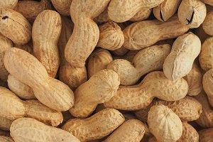 peanuts food background