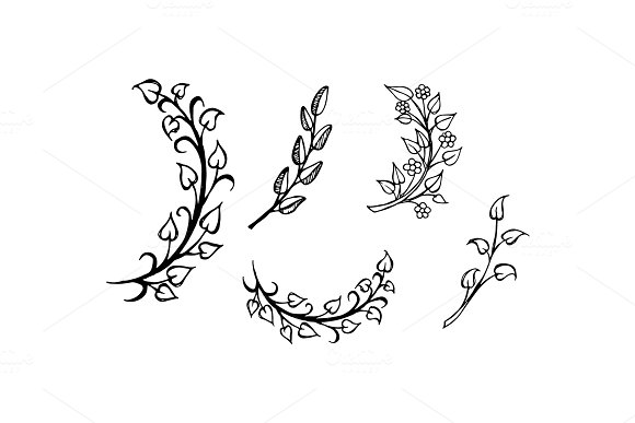 Set of Hand Drawn Branches Leaves in Heart Shape