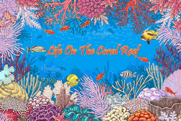Life on Coral Reef in Illustrations
