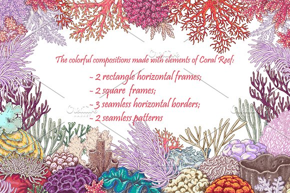 Life on Coral Reef in Illustrations - product preview 1