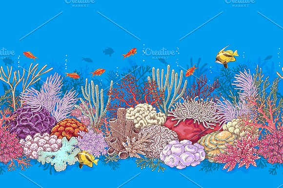 Life on Coral Reef in Illustrations - product preview 2