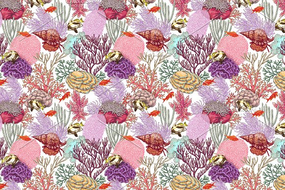 Life on Coral Reef in Illustrations - product preview 6