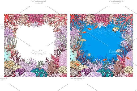 Life on Coral Reef in Illustrations - product preview 7