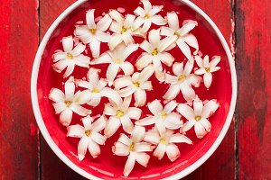 White flowers in bowl with water