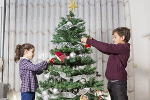 Brothers decorating Christmas tree