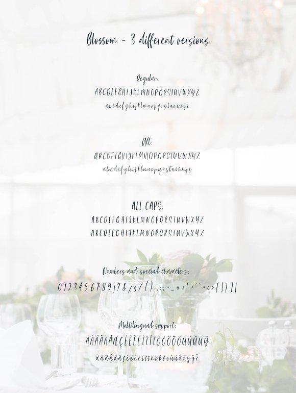 Blossom Font Script Fonts Creative Market