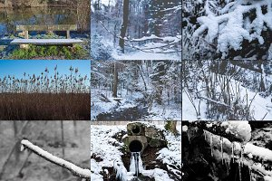Winter Photo Bundle