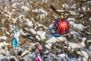 A red New Year ball hangs on a branch with snow. Christmas toys.