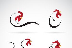 Vector of an chicken design. Animal.