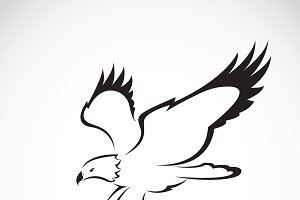 Vector of eagle design. Animal. logo