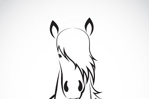Vector of a horse head design.Animal