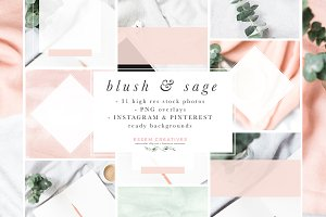 Blush Sage Stock Photo Social Bundle