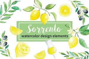 -40% Sorrento Lemons Watercolor