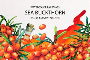 Watercolor Sea Buckthorn