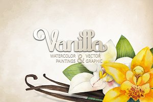 Graphic and watercolor vanilla