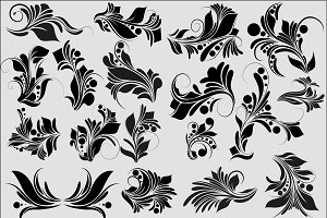 Floral Vector Elements Set