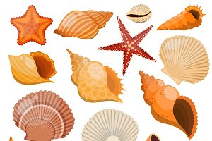 Shells And Sea Stars Icon Set