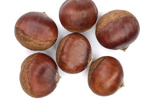 chestnut isolated on white background. Top view. Flat lay
