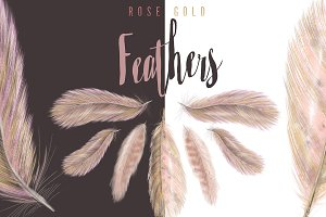 Rose-Gold & Blush Feathers