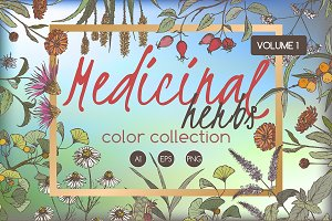 Medicinal herbs color set Vol.1