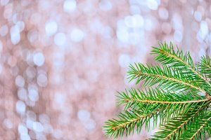 Branches of Christmas Tree on abstract shimmering bokeh backgrou