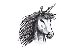 Unicorn mystic magic horse animal vector sketch