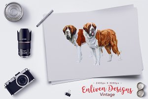 Painted Dog: Pair of St Bernard Dogs