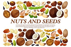 Vector poster of nuts and fruit seeds