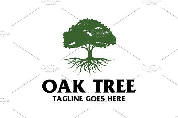 Oak Tree Logo Templates Creative Market