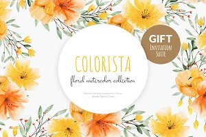 Colorista - Watercolor Collection