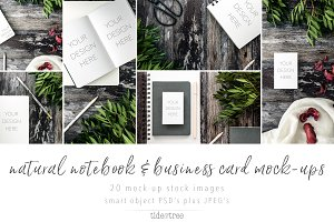 Natural Books & Biz Cards Mock-Ups