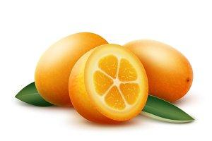 Orange kumquat fruits with leaves