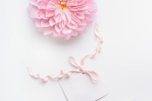 Pastel color mock up, pink flower