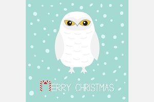 Merry Christmas. White Snowy owl.