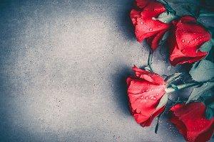 Red roses on gray desktop