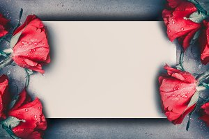 Red roses mock up banner