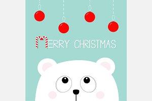 Bear Christmas toys Snow flakes