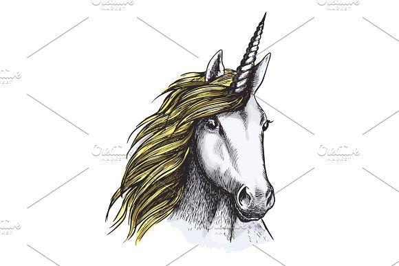 Vector Sketch Unicorn Horse Mystic Magic Animal
