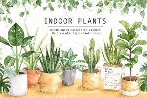 Indoor Plants Watercolor Clipart