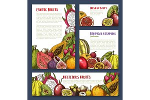 Vector sketch posters of tropical exotic fruits