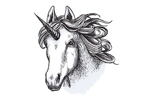 Unicorn horse mystic magic animal vector sketch