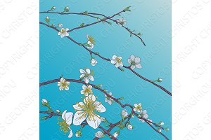 Peach Cherry Blossom Flowers Background Pattern
