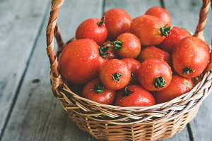 organic tomatoes in a basket
