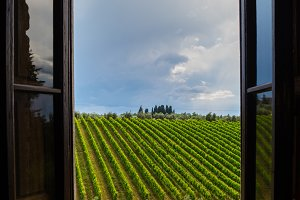 Tuscany field, Chianti valley